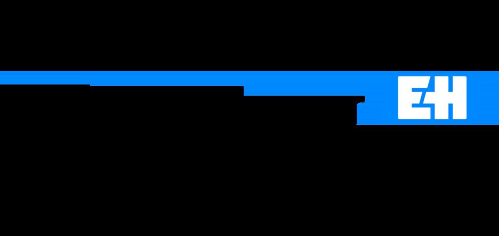 Endress : Brand Short Description Type Here.
